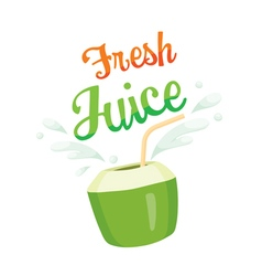 Fresh Coconut Juice vector image