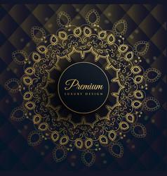 Mandala decoration background in ethnic style vector