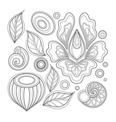 Monochrome set of floral design elements in vector