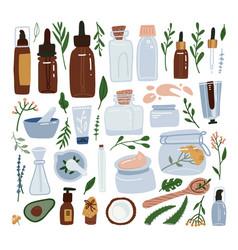 organic cosmetic packaging big set - bottles vector image
