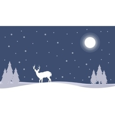 SIlhouette of deer at night Christmas landscape vector image