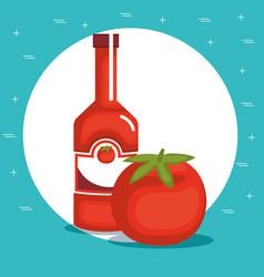 tomato ketchup healthy food vector image