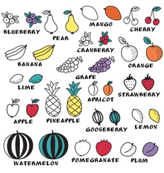 Set of doodle fruits - for scrapbook or design vector image vector image