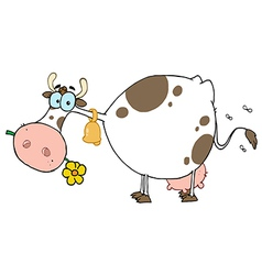 Cow Different Color White vector image