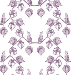 Physalis pattern3 vector image vector image