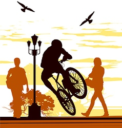 Bicycle silhouettes vector