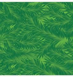 Fir tree seamless pattern vector image