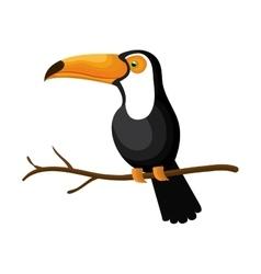 Toucan bird exotic icon vector