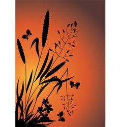 Wildflowers in the evening vector image