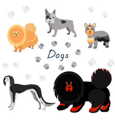 dogs collection in flat style vector image