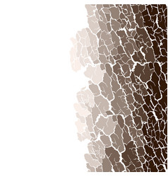 Seamless pattern of bark texture wood vector