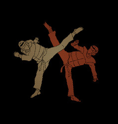 taekwondo fighting graphic vector image
