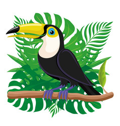 toucan bird sitting on a branch vector image