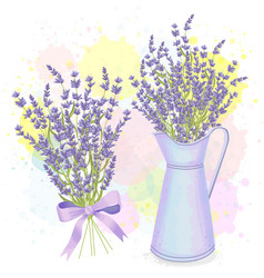 watercolor lavender bouquet and pitcher vector image