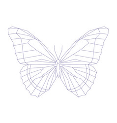 geometric linear butterfly vector image vector image