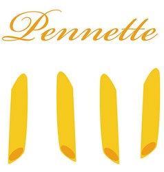 Pennette pasta vector image vector image