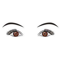object pair of eyes brown isolated vector image vector image