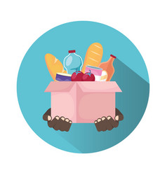 Charity donation box with groceries vector