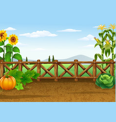 Farm background with various plant vector