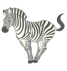 fun cute cartoon zebra vector image