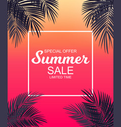 summer sale concept background with palm leaves vector image