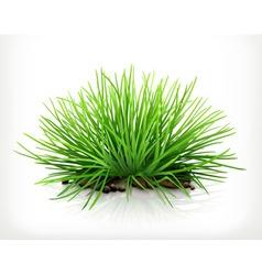 Fresh grass icon vector image vector image