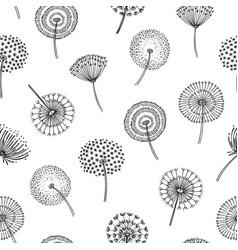 dandelion seamless pattern dandelions grass vector image
