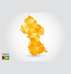 geometric polygonal style map of guyana low poly vector image