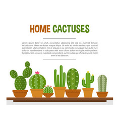 Home cactuses mockup vector