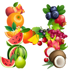 Letter H composed of different fruits with leaves vector
