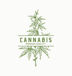 Premium quality cannabis abstract sign vector