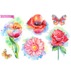Spring flowers set watercolor vector