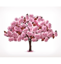 Spring pink tree vector image