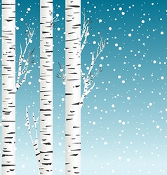 Winter background with birch trees and snowflakes vector