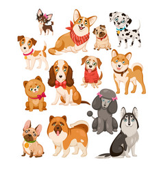 happy dogs cute puppy pets and home vector image