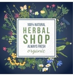 Herbal shop emblem with herbs and flowers vector