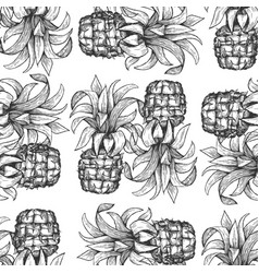 Pineapple seamless pattern hand drawn tropical vector