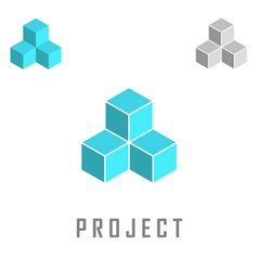 Project isometric logo vector image