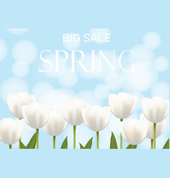 Spring sale with white flowers vector