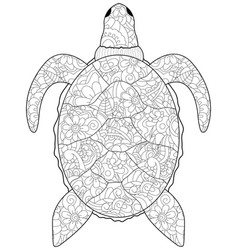 anti stress coloring sea animal turtle black vector image vector image