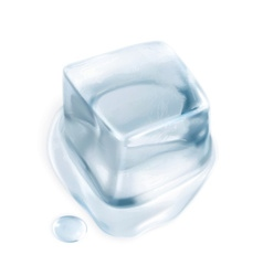 Ice cube isolated on white background vector image