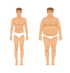 visualization of weight loss muscular and fat man vector image