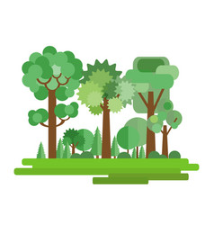 forest in a flat style vector image vector image