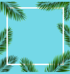 frame with palm trees vector image vector image