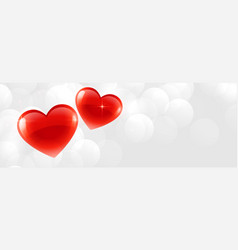 Beautiful two shiny hearts banner with text space vector
