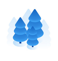 Blue spruce icon vector