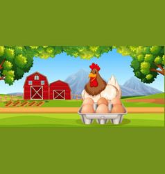 Chicken with eggs farm scene vector