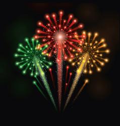colorful fireworks celebration vector image