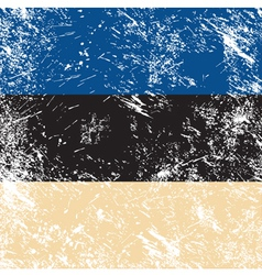 Estonia retro flag vector image