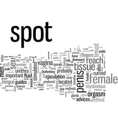 How to easily reach the g spot vector